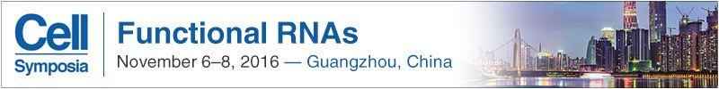 Guangzhou_Functional RNAs